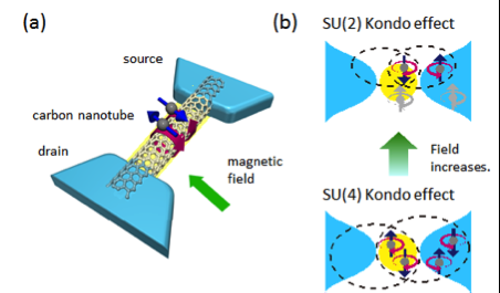 Novel method to study quantum fluctuations in exotic phases of matter