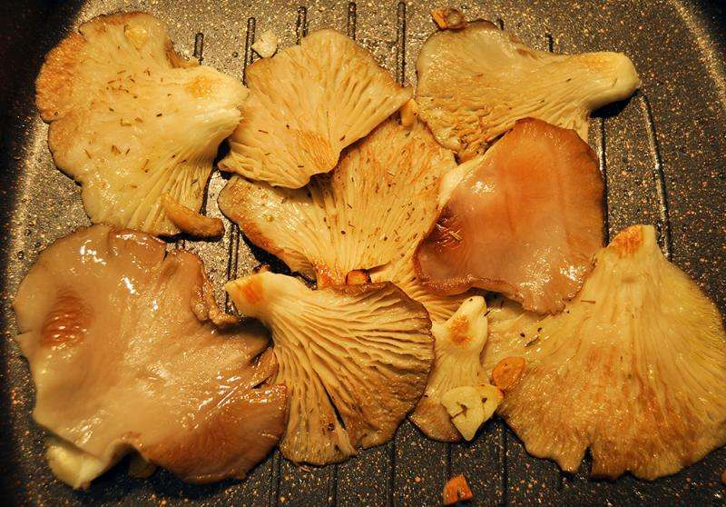Nutritional properties of mushrooms are better preserved when they are grilled or microwaved