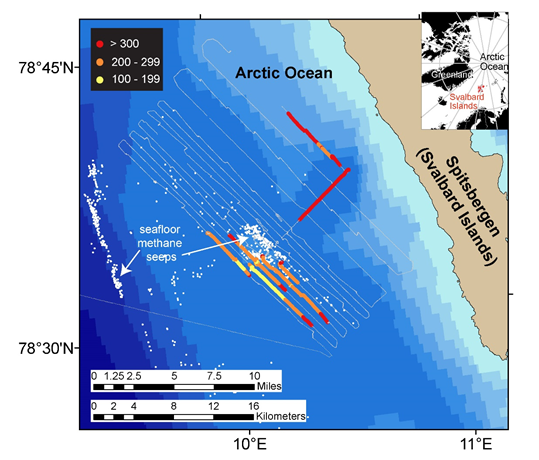 Ocean absorption of carbon dioxide compensates for emissions from seafloor methane seeps