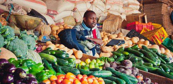 Of cabbages and cows—increasing agricultural yields in Africa