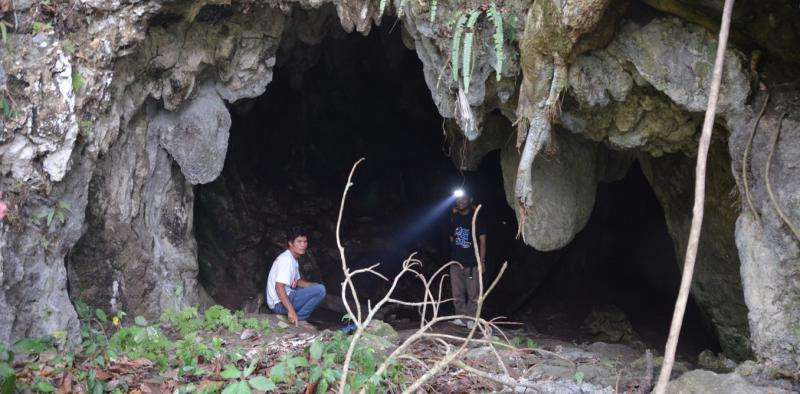 Old teeth from a rediscovered cave show humans were in Indonesia more than 63,000 yearsago