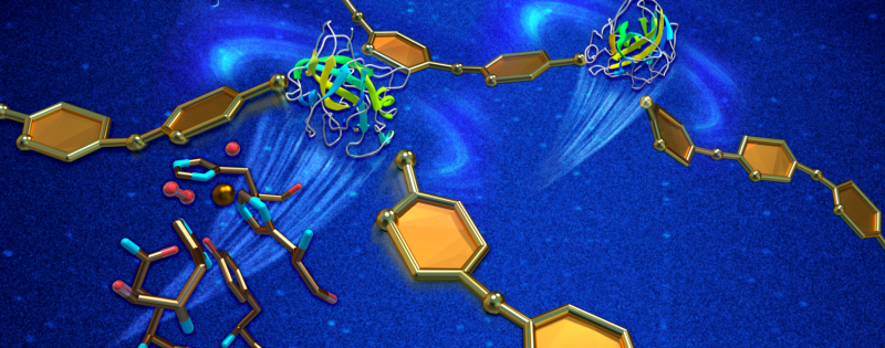'On your mark, get set' Neutrons run enzyme's reactivity for better biofuel production