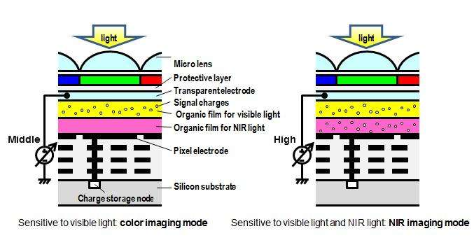Organic CMOS image sensor with electrically controllable near-infrared light sensitivity
