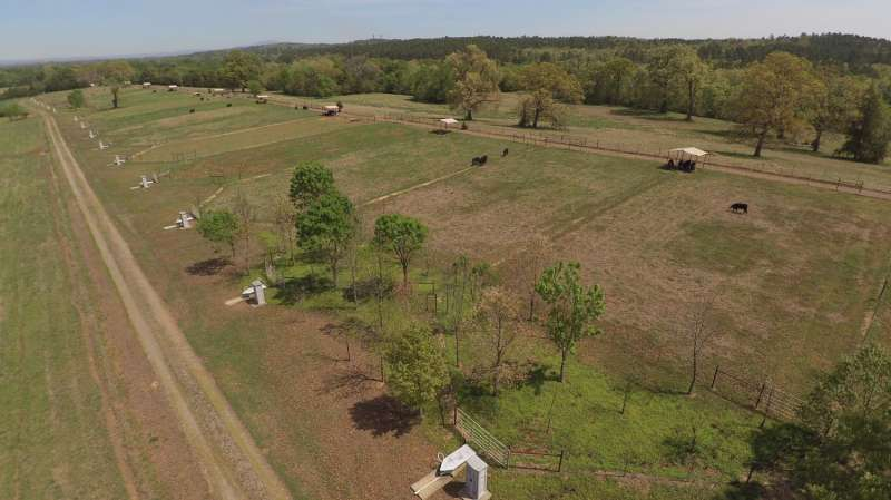 Pasture management and riparian buffers reduce erosion