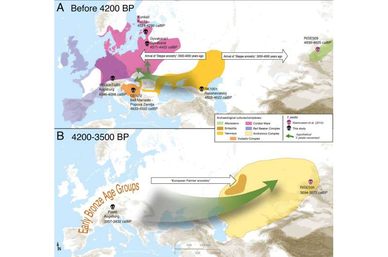 Plague likely a Stone Age arrival to central Europe