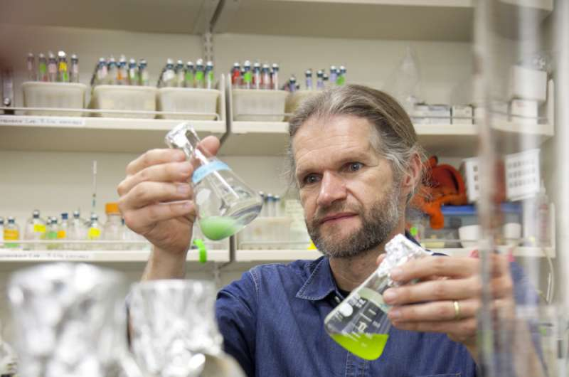 Portland State U research shows some viruses can infect even after major mutations