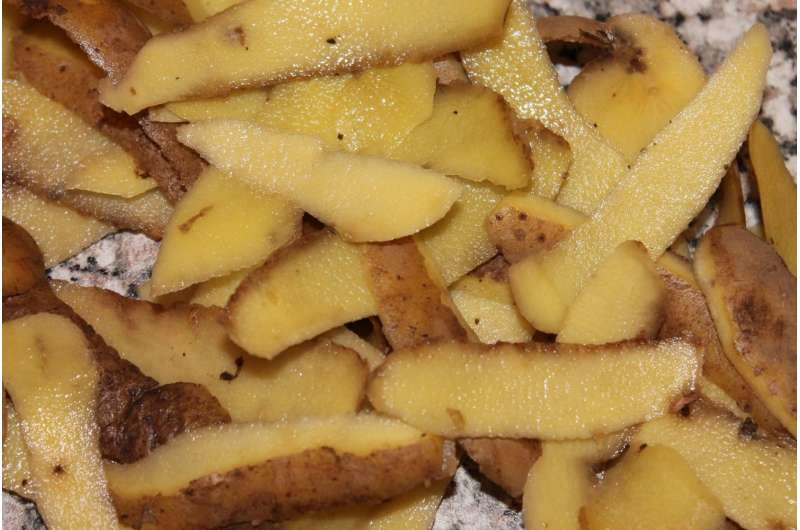 Potato waste processing may be the road to enhanced food waste conversion