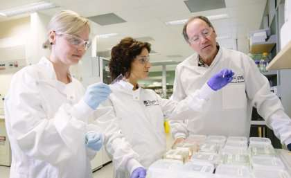 Potential treatment for brain cancer as drug shrinks tumours