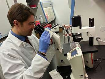 Precision targeting provides new insights into therapy-resistant cancers