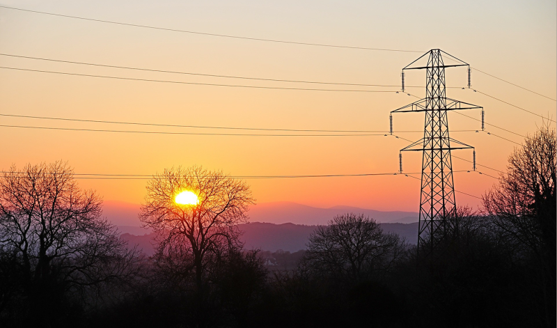 Protecting the power grid with circuit simulation methods