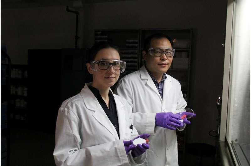 Researcher turns 'SARS mask' into a virus killer