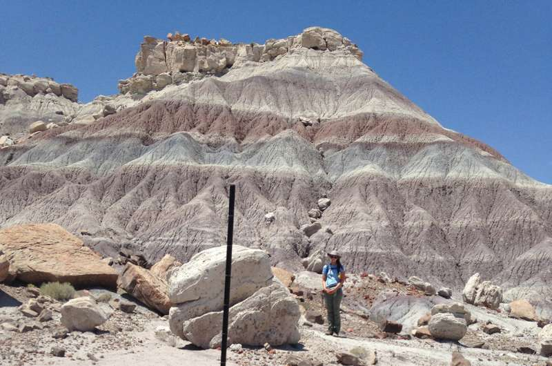 Research provides unique insight into extinction dynamics in Late Triassic