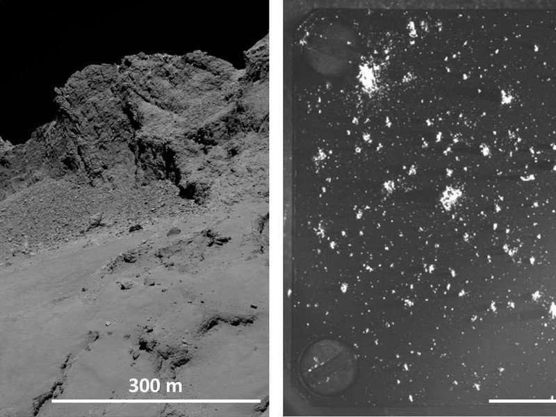 Rosetta: A Comet's List of Ingredients