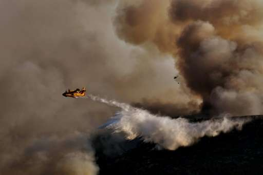 Soaring temperatures and tinder-dry forest floors across southern Europe have led to a rash of devastating wild fires