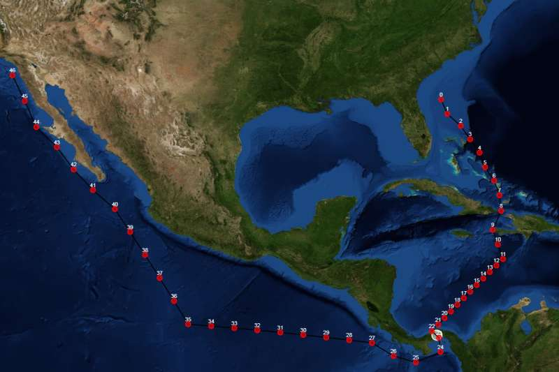 Software vastly improves the ability of ships to reroute through unpredictable weather