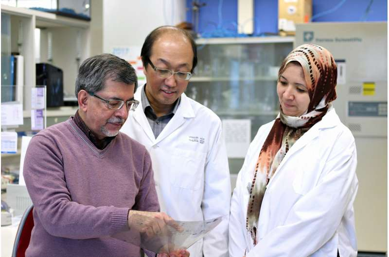 Solving the puzzle of Alzheimer's disease
