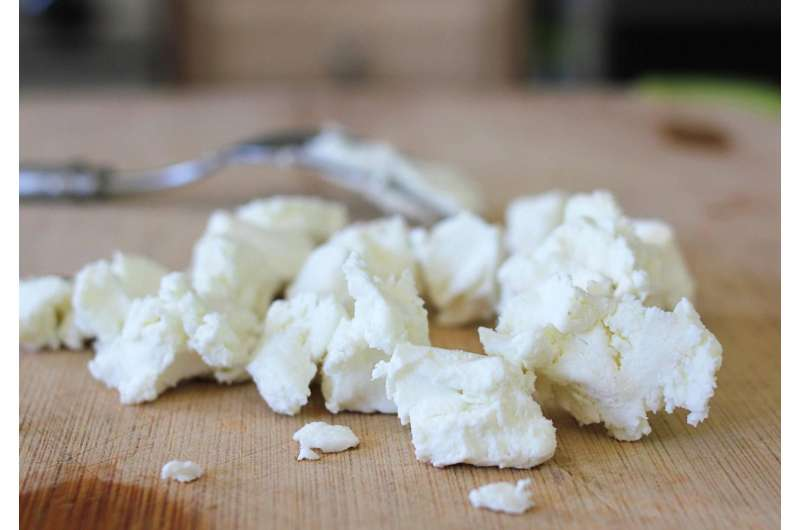 Study catalogs the complex flavors of American-made goat cheese