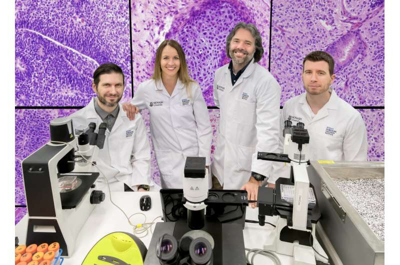 Suite of Monash papers shed light on decade-long stem cell mystery