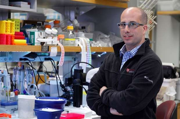 Suppressing single protein greatly extends life span of mice with form of ALS