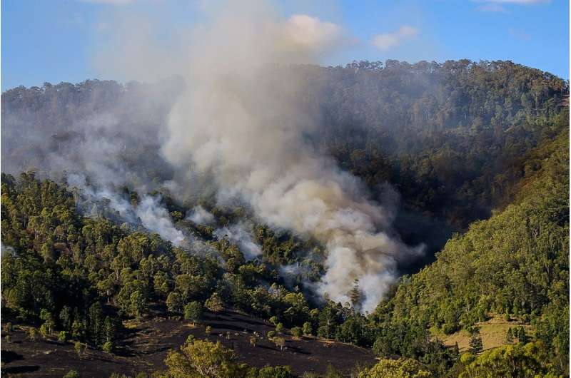 Tackling wildfires in Mediterranean forests