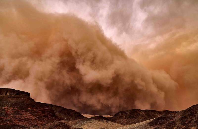 The dust storm microbiome