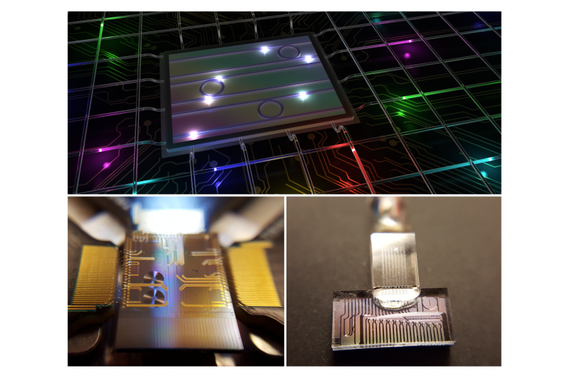 The multi-colored photons that might change quantum information science