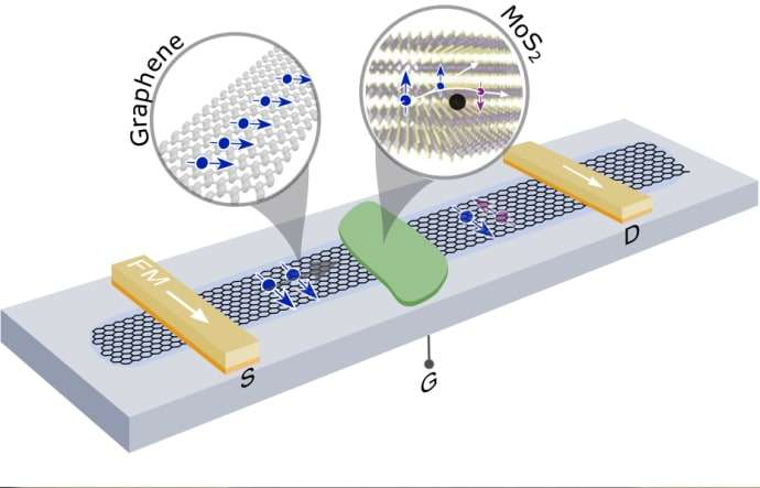 The spin in graphene can be switched off