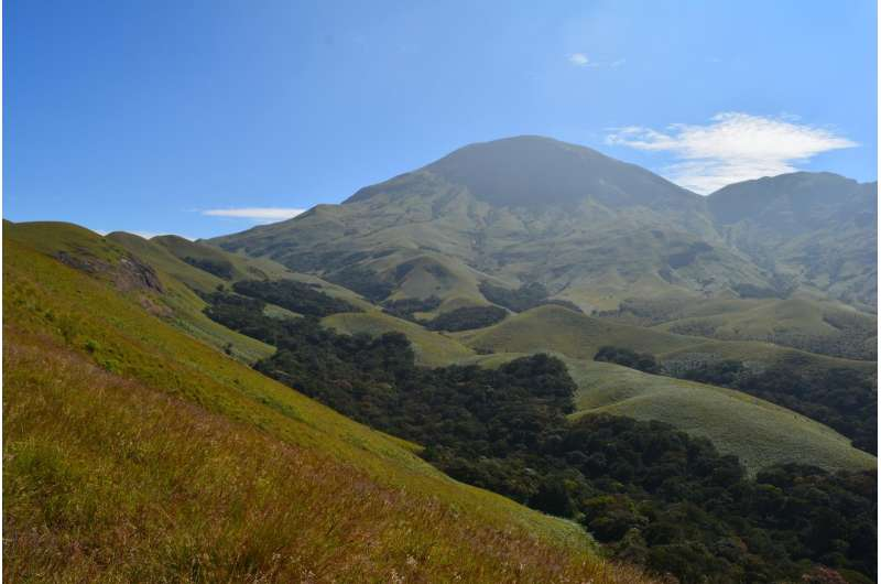 The Western Ghats of India revealed two new primitive species of earthworm