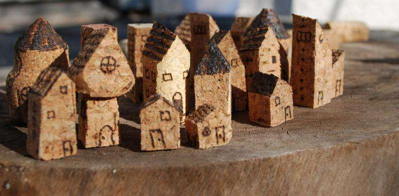 Tiny houses—the big idea that could take some heat out of the housing crisis