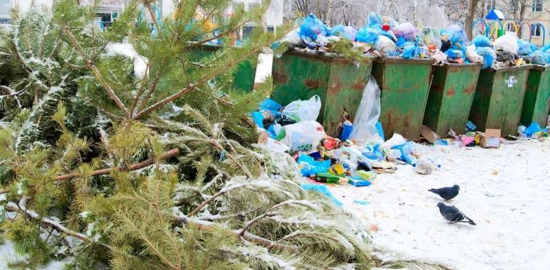 'Tis the season to redesign and reduce our waste