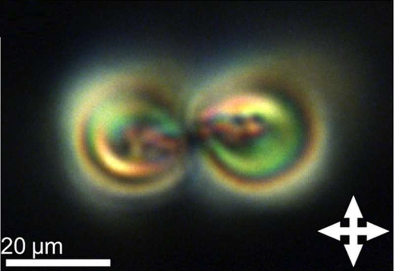 topological soliton