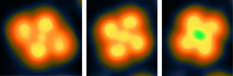 Towards data storage at the single molecule level