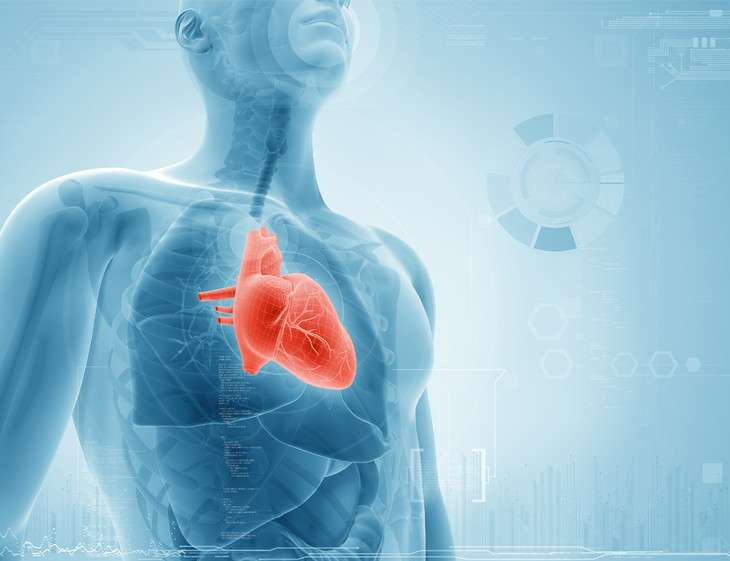 Treatment options for heart failure
