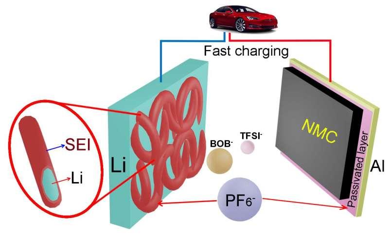 Tweaking electrolyte makes better lithium-metal batteries