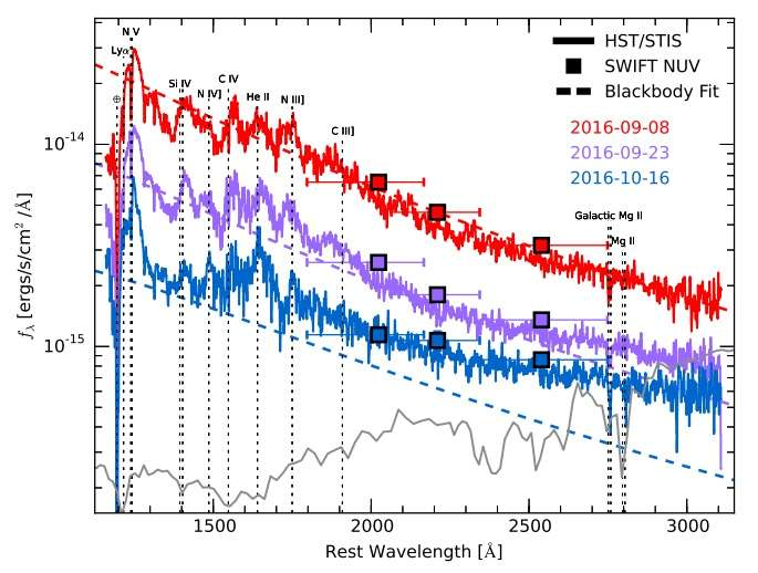 Ultraviolet spectroscopic evolution of a tidal disruption event investigated by astronomers