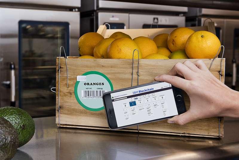 Using blockchain technology to address worldwide food safety