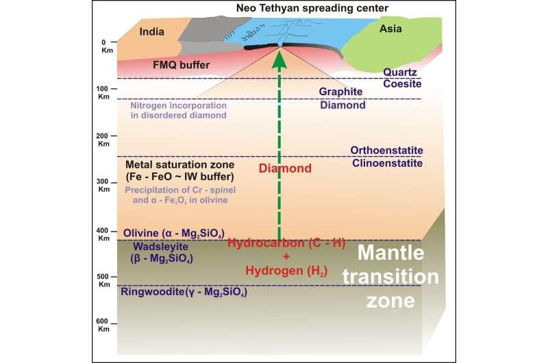 UTA study sheds new light on evolution