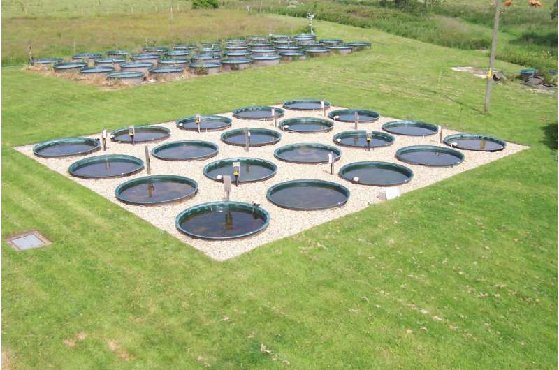 Warming ponds could accelerate climate change