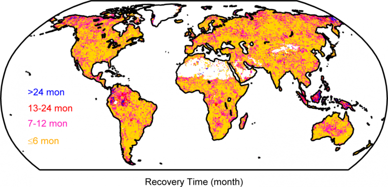 What it takes to recover from drought
