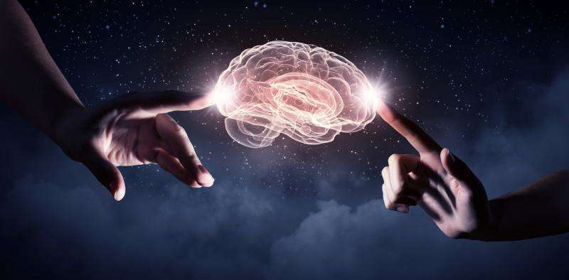 Why did humans evolve such large brains? Because smarter people have more friends