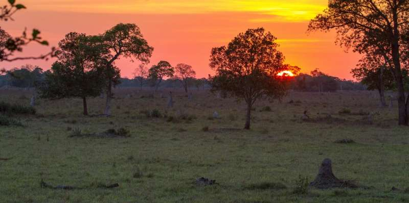 Wilderness areas are being destroyed but the World Heritage Convention can protect them