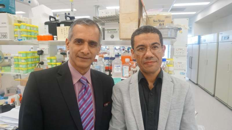 World-first discovery of protein that causes liver disease brings hope for new treatments