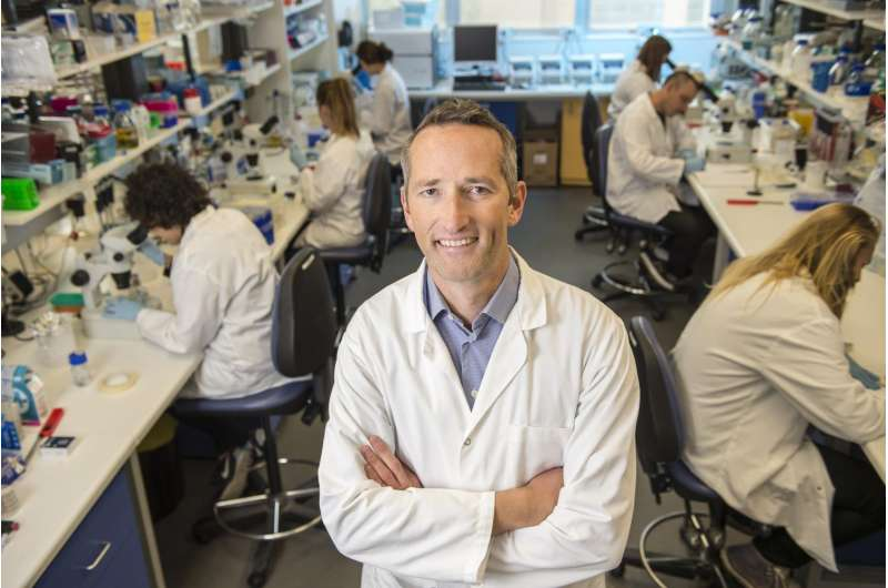 Worm gene could be key to developing obesity treatment