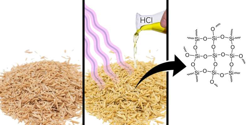 A RUDN Chemist Obtained a Base for Nanocatalyst from Rice Husk