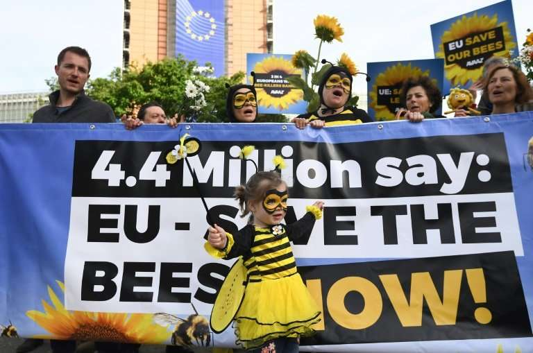 Campaigners rallied outside the European Commission in Brussels as member states voted in favour of banning bee-killing pesticid