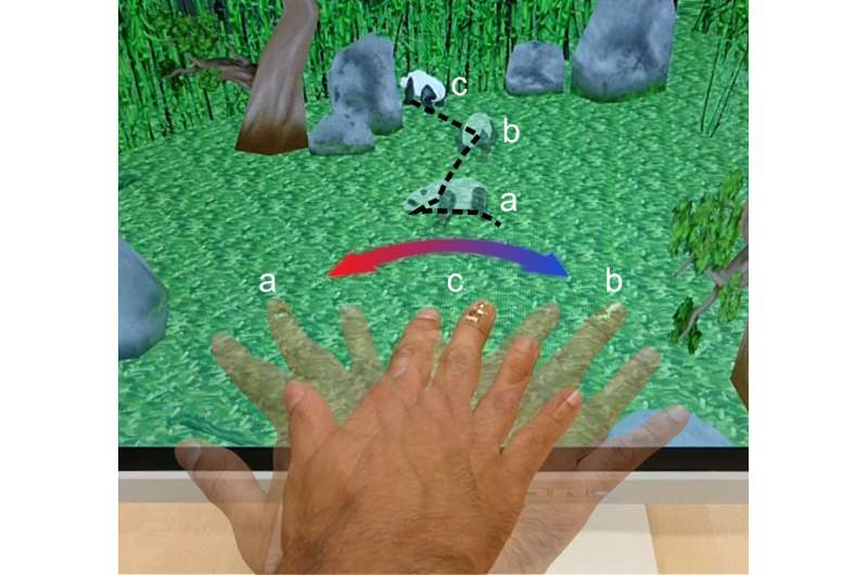 Electronic skin points the way north