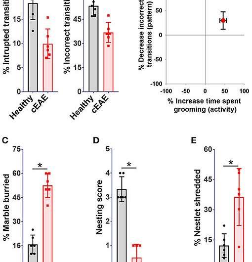 Immune cells trigger OCD-like behaviour in multiple sclerosis, study finds