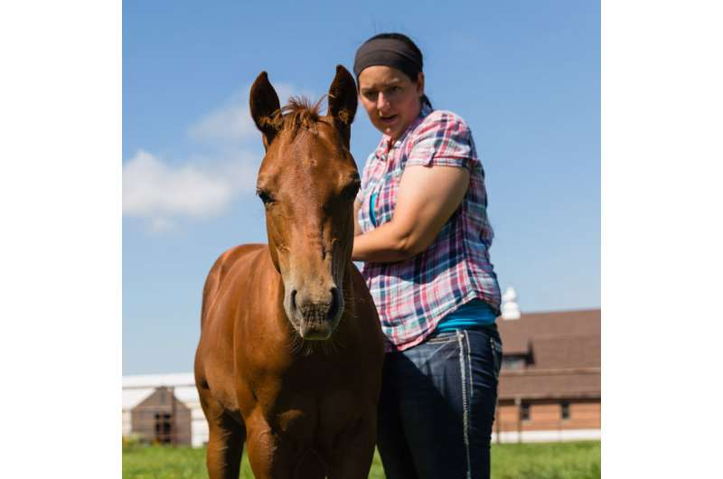 Influenza D antibodies confirmed in horses on Midwestern farms