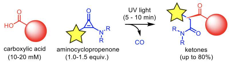 Light-induced modification of a carboxylic acid with an aminocyclopropenone
