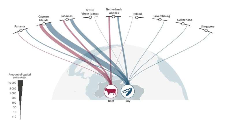 Links between tax havens, deforestation and illegal fishing exposed